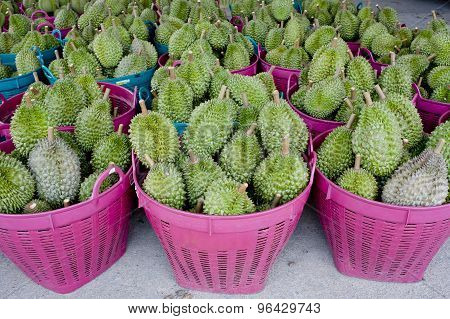 Durian In The Basket Ready To Sell
