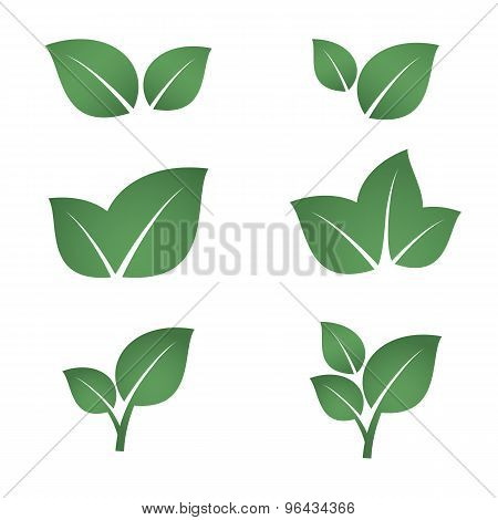 Green leaves icons set.