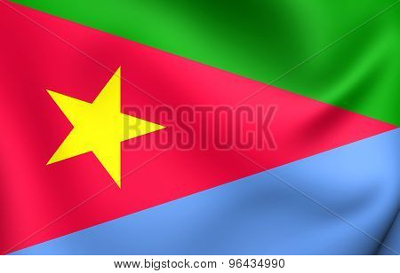 Flag Of Eritrean People's Liberation Front