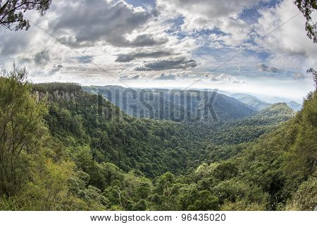 Springbrook National Park, Goomoolahra Falls Lookout