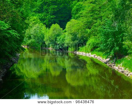 Spring greenery reflected in the river