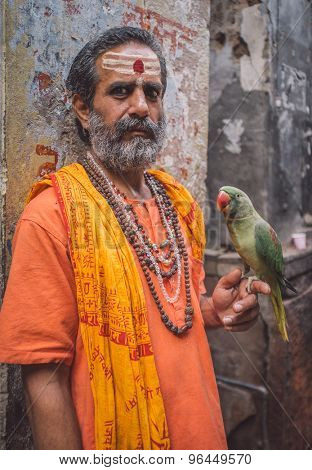 VARANASI, INDIA - 25 FEBRUARY 2015: Indian man pretending to be a sadhu holds parrot in street. Post-processed with grain, texture and colour effect.