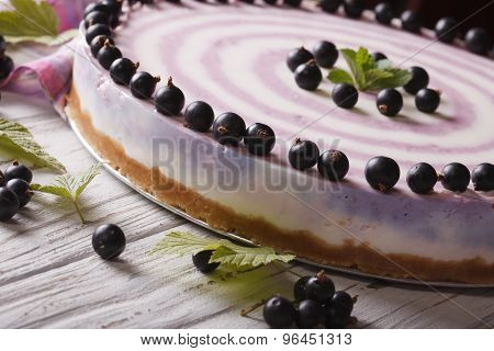 Striped Currant Cheesecake Macro On A Plate. Horizontal