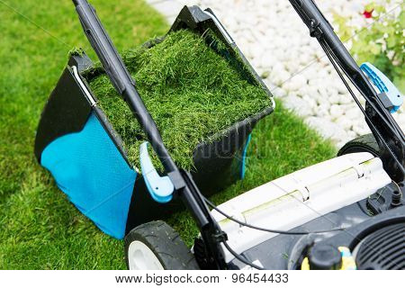 Lawn Mower In The Garden. Full Of Grass