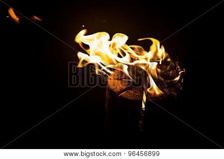 Photo of a burning log, flame
