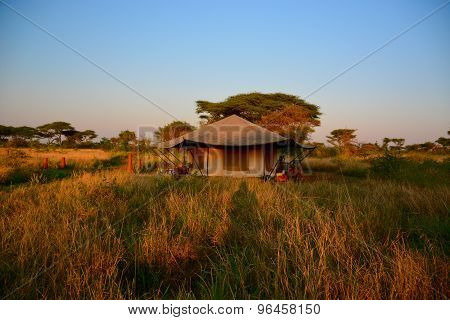 Tented safari camp Serengeti