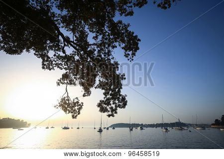 Sailboats At Sunset In Adriatic Sea