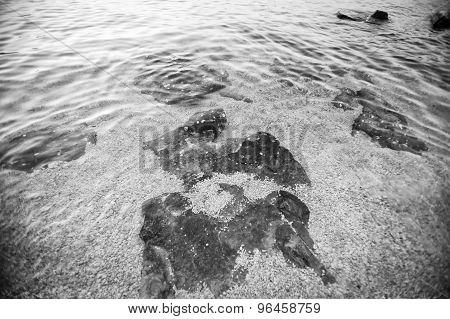 Sea Water Surface Bw