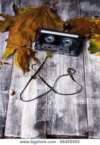 Cassette Fall