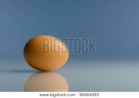 A single egg