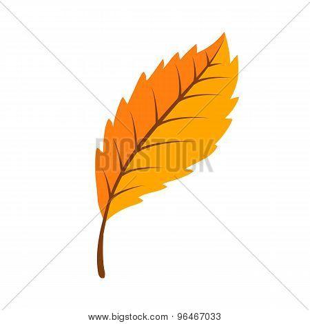Autumn bright fall leaf.