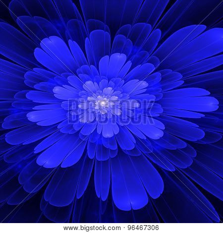 Blue fractal Bloom with white in the middle