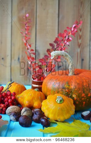 Autumn Still Life - Pumpkins, Squash, Chestnuts, Walnuts, Ash On A Wooden Background