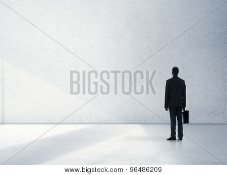 Businessman Professional Occupation Looking Standing Concept
