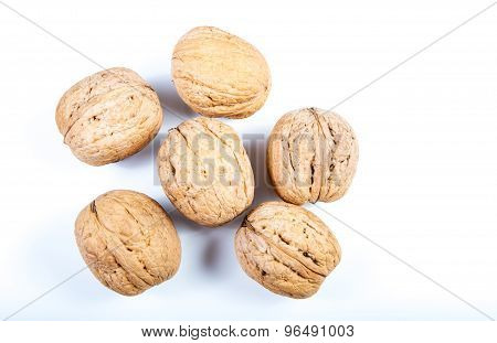 Walnuts On A White Background .