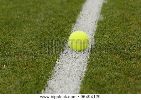 Tennis ball on grass tennis court