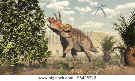 Triceratops eating at magnolia tree - 3D render