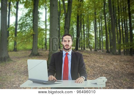 Unsmiling businessman sitting at desk against tree trunks in the forest