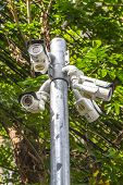picture of cctv  - Multiple Angle Outdoor CCTV Camera on the Pole near the Tree - JPG