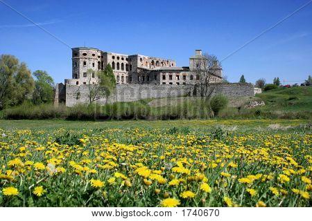Castle Krzyztopor