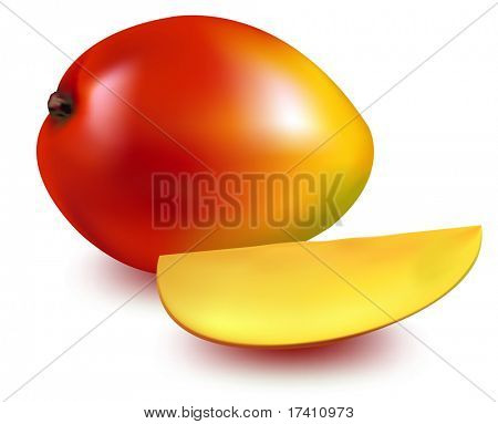 Photo-realistic vector illustration. Ripe mango with the mango slice.
