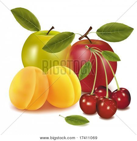 Photo-realistic vector illustration. Two apples, two apricots and cherries.