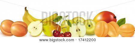 Fruit design border isolated on white. Vector.