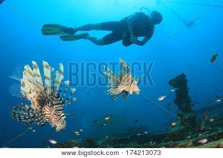 Scuba diver and lionfish fish