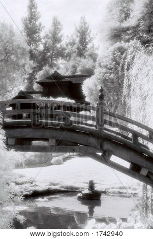 Infrared Bridge 2
