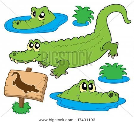 Crocodile collection on white background - vector illustration.