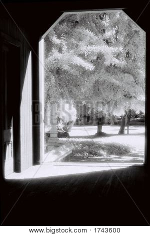 Infrared Barn Door