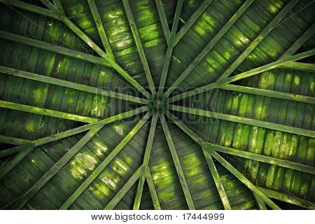 Detail of a green old wooden ceiling with radial design