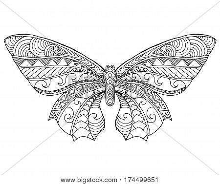 5348eff46 Beautiful butterfly. Black white hand drawn doodle animal. Ethnic patterned  vector illustration. Sketch