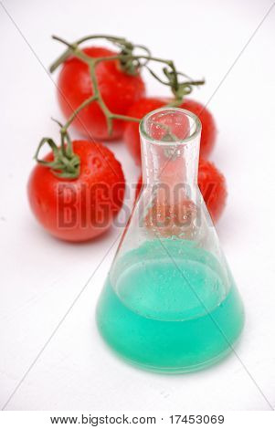 Glass beaker with biohazard sign and genetically-modified tomato