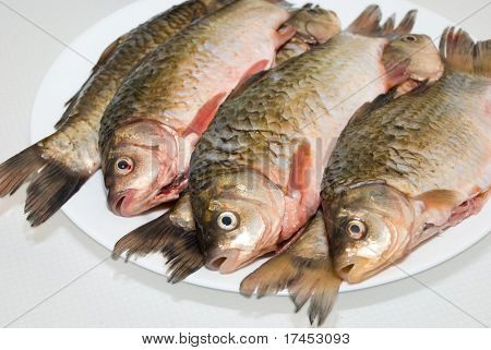 Fresh fish ready to cooks