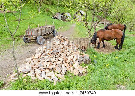 countryside of Bosnia and Hercegovina
