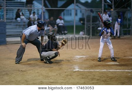 Umpire and Catcher Waiting for Pitch