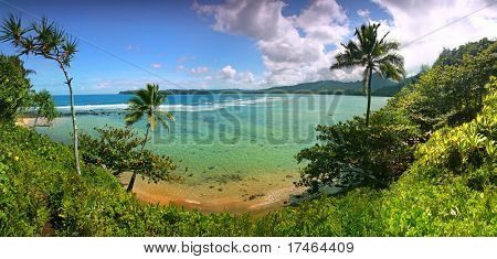 Paradise Beach in Kauai Hawaii With Turquoise Water and Palm Trees
