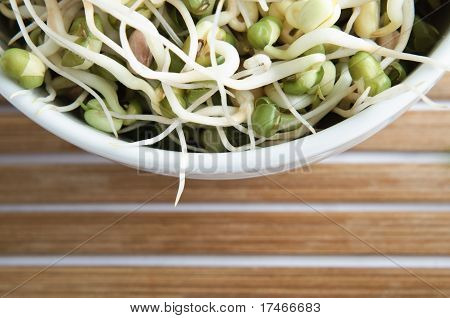 Bowl Of Beansprouts Overhead Macro