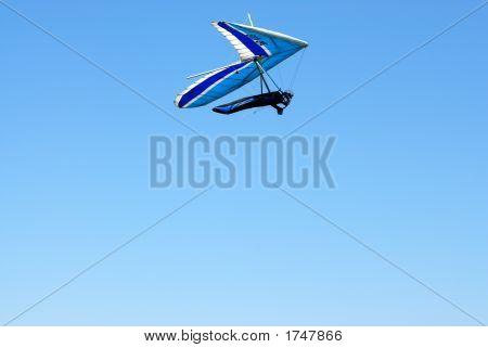 Blue Wings In The Sky