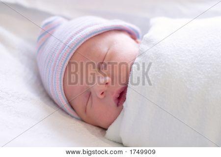 Newborn Resting