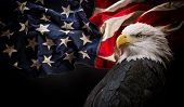 American Bald Eagle - symbol of america -with flag. United States of America patriotic symbols. poster