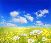Постер, плакат: Красивый пейзаж