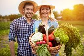 Nice farmers couple posing with basket with vegetables in nature  poster
