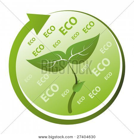 Green Eco concept. Renewable, recycle, regenerate, reforestation.