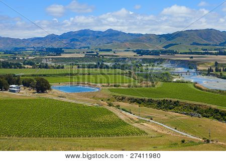 Marlborough wine region in New Zealand