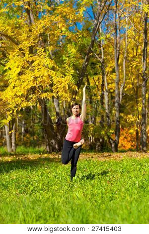 Yoga Ardha Baddha Padmottanasana Pose