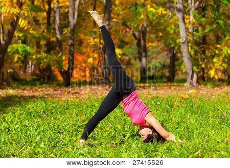Yoga Adho Mukha Eka Pada Shvanasana Pose