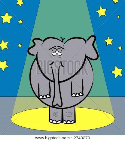Elephant Under Spotlight