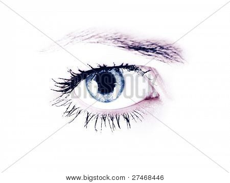 Women's eyes on a white background